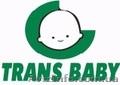 Детские коляски Trans baby продажа оптом и в розницу