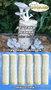 Семена грибов, споры грибов, мицелий вешенки, шампиньона Недорого!, Объявление #736222