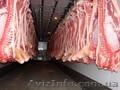 Продаю свинные полутуши